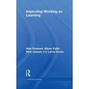 Improving Working as Learning by Alan Felstead