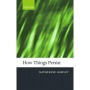 How Things Persist by Katherine Hawley