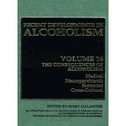 Recent Developments in Alcoholism: Consequences of Alcoholism-medical, Neuropsychiatric, Economic, Cross-Cultural Volume 14 by Marc Galanter