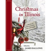 Christmas in Illinois by James Ballowe