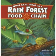 What Eats What in a Rain Forest Food Chain by Lisa J Amstutz