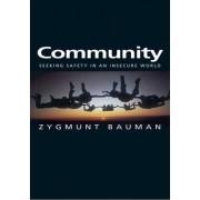 Community - Seeking Safety in an Insecure World by Zygmunt Bauman