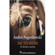 Nic Studeno. Al doilea cartus - Andrei Pogorilowski