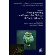 Bioengineering and Molecular Biology of Plant Pathways: Volume 1 by Norman G. Lewis