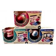 Bundle Set Of 3 Anatomy Education Science Kits Eye, Heart, Teeth