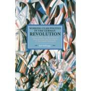 Working Class Politics In The German Revolution (historical Materialsim, Volume 77) by Ralf Hoffrogge