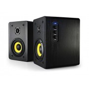 Thonet and Vander Vertrag Bluetooth 2.0 Wooden Bookshelf Speakers German Engineering and Design