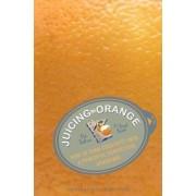 Juicing the Orange by Pat Fallon