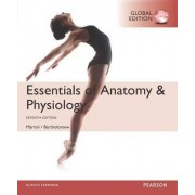 Essentials of Anatomy & Physiology by Frederic H. Martini