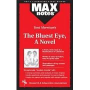 Bluest Eye, a Novel by Christopher A. Hubert