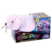 Glow Pets - Seal