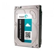 Seagate Enterprise NAS HDD +Rescue 6TB