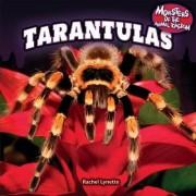 Tarantulas by Rachel Lynette