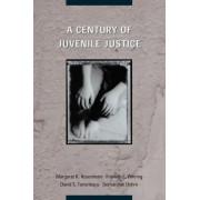 A Century of Juvenile Justice by Margaret K. Rosenheim