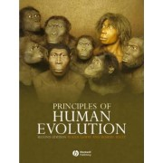 Principles of Human Evolution by Robert Andrew Foley