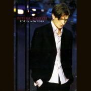 Peter Cincotti - Live in New York (0013431701590) (1 DVD)