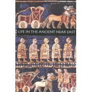 Life in the Ancient Near East, 3100-332 B.C.E. by Daniel C. Snell