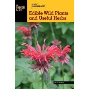 Basic Illustrated Edible Wild Plants and Useful Herbs by Jim Meuninck