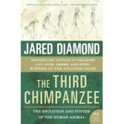 The Third Chimpanzee: The Evolution and Future of the Human Animal