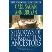 Shadows of Forgotten Ancestors by Sagan
