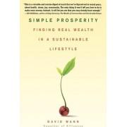 Simple Prosperity by David Wann