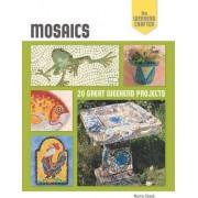 Mosaics by Martin Cheek