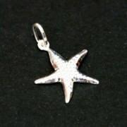 Pendant Silver 925 Star of the Sea