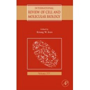 International Review of Cell and Molecular Biology: Vol. 277 by Kwang W. Jeon