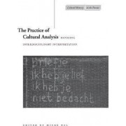 The Practice of Cultural Analysis by Bryan Gonzales