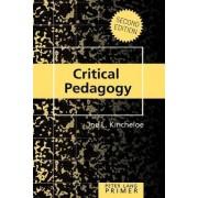 Critical Pedagogy Primer by Joe L. Kincheloe