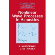 Nonlinear Wave Processes in Acoustics by K. Naugolnykh