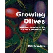 Growing Olives by Dirk Dowling