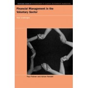 Financial Management in the Voluntary Sector by Paul Palmer
