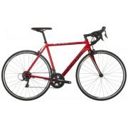FOCUS Cayo AL Sora Bicicletta da corsa rosso S / 51 cm Bici da corsa