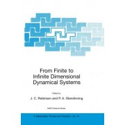 From Finite to Infinite Dimensional Dynamical Systems by James C. Robinson