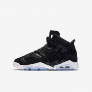 Air Jordan 6 Retro Premium Heiress