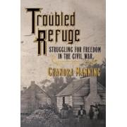 Troubled Refuge: Struggling for Freedom in the Civil War