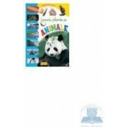 Locuri plante si animale - Urs Panda