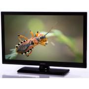 """Televizor LED Orion 61 cm (24"""") T24DPIFLED, HD Ready, CI+ + Voucher Cadou 2 beri Ursus (draft) la City Grill"""