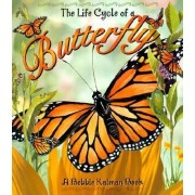 The Life Cycle of a Butterfly by Bobbie Kalman