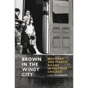 Brown in the Windy City by Lilia Fernandez