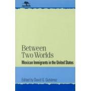 Between Two Worlds by David G. Gutierrez