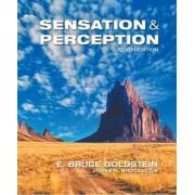 Sensation and Perception by James Brockmole
