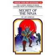 Secret of the Ninja by Jay Leibold
