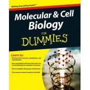 Molecular & Cell Biology for Dummies by Rene Fester Kratz