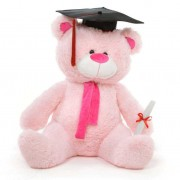 Pink 3.5 Feet Big Muffler Teddy Bear with Graduation Cap and a Scroll