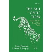 The Fall of the Celtic Tiger by Donal Donovan