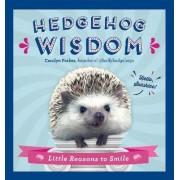 Hedgehog Wisdom by Carolyn Parker