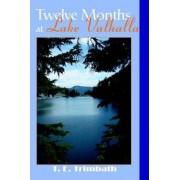 Twelve Months at Lake Valhalla by T E Trimbath
