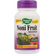 Noni Fruit 60 capsule